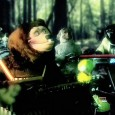 mgmt-electric-feel-rock-afire-explosion