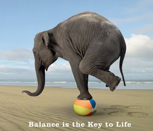 Balance is the key to life1 Alkalize or Die? Find a Healthy Balance and Thrive!