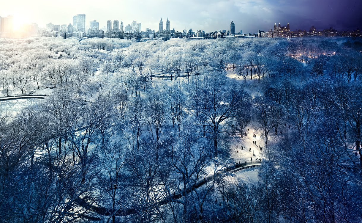 day night combined Central Park NYC1 New York City, Day and Night Combined By Stephen Wilkes (Photo Gallery)