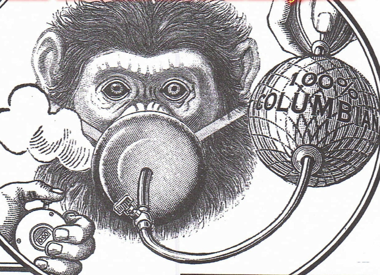 Monkey-Brain-Damage