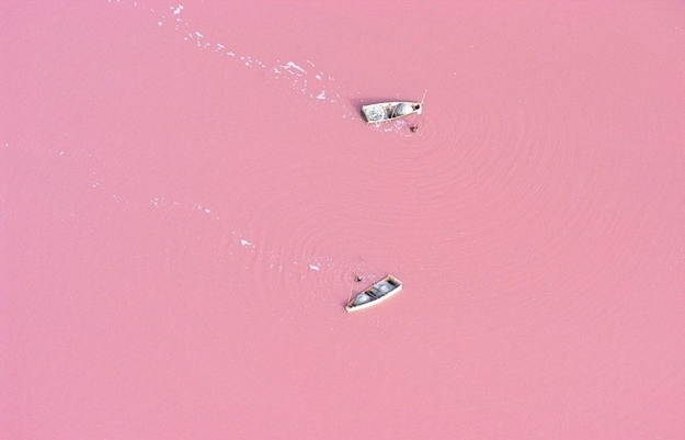 surreal-travel-spot-lake-retba-senegal