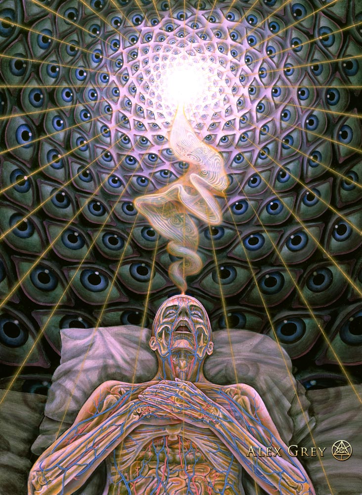 Alex-Grey-Psychedelic-Painting-Art-Gallery-DMT