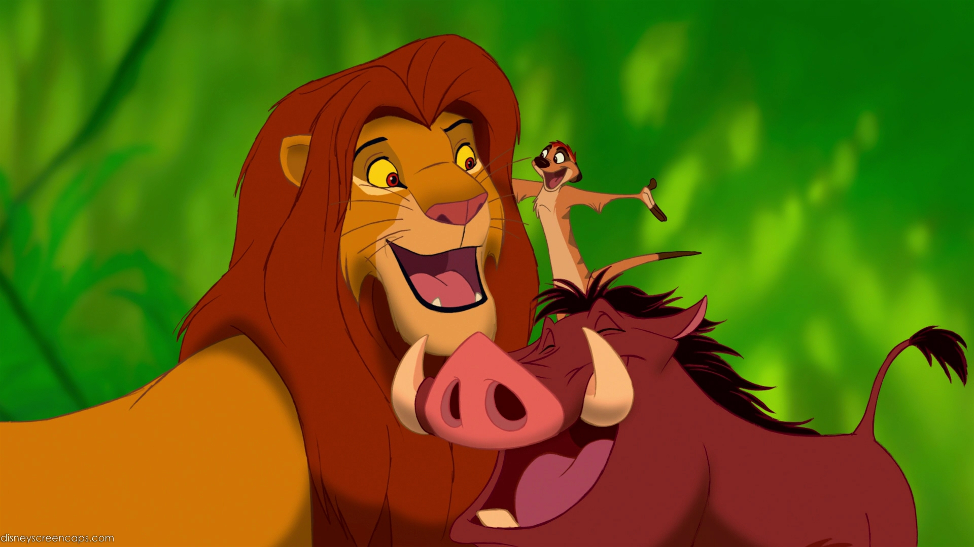 Lionking disneyscreencaps.com 5554 Top 5 Regrets People Have on Their Death Beds