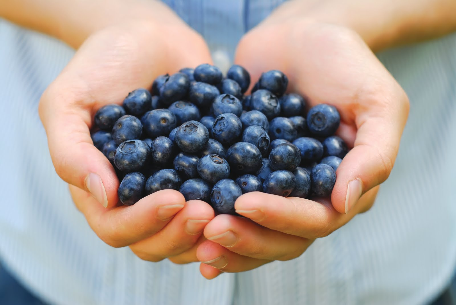 Holistic Pain Remedies Blueberries Holistic Pain Remedies   Let Food Be Thy Medicine