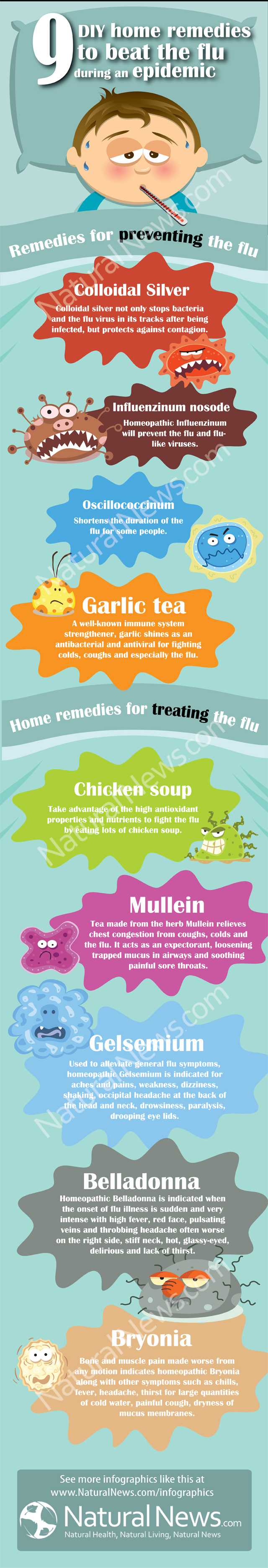 Flu remedies infographic Fight The Flu   Know Your Enemy and Remedies (Infographics)