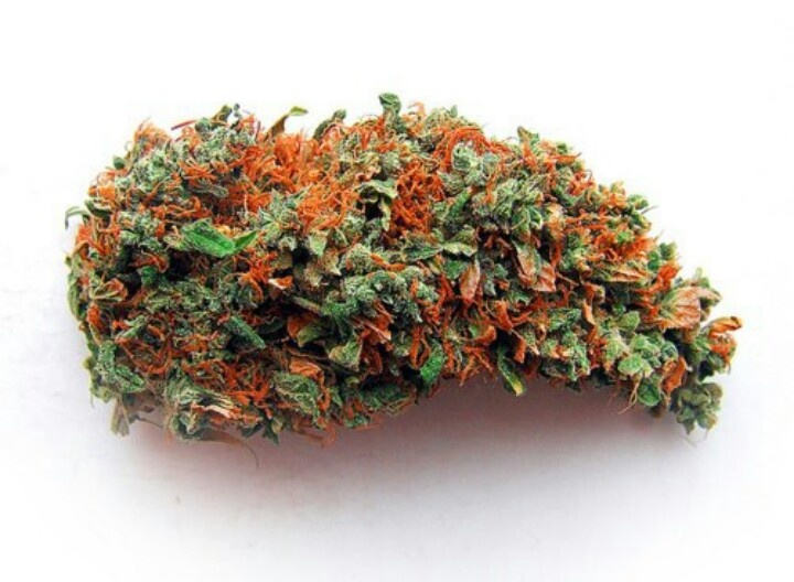 1c13d3c9ddfa3f41ea30f6eced870fd4 Eating Mangos Increases Your Marijuana High (Study)